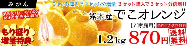 増量でこオレンジ