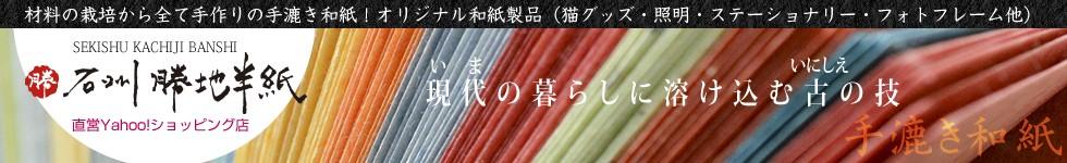 伝統の手漉き和紙を今の生活に溶け込むオシャレな商品に!