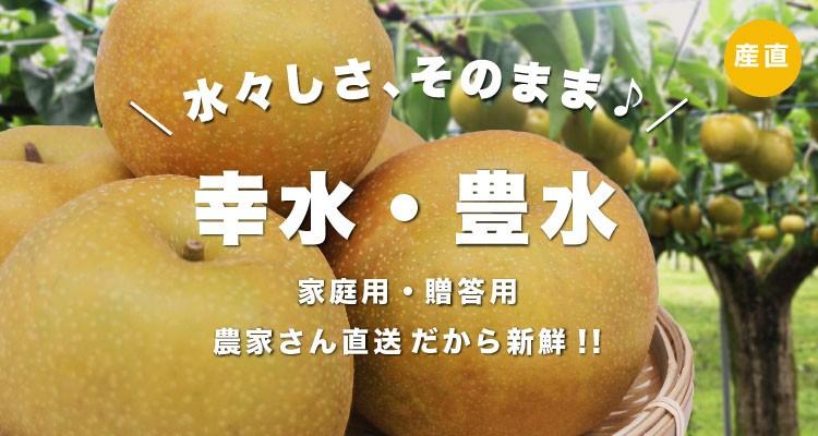 梨 なし フルーツ