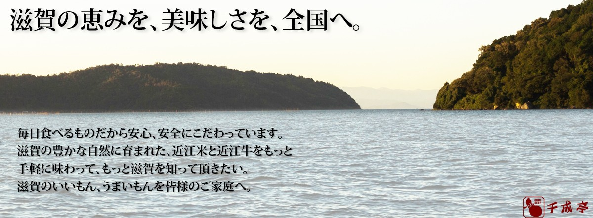 近江米みずかがみ特集