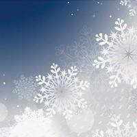 Tポイント貯まる スマホケース iphone7 手帳型ケース 冬テーマ デザイン 特集