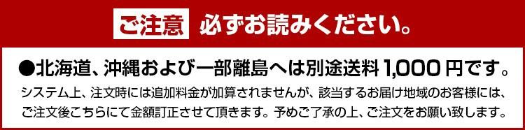 北海道、沖縄および一部離島へは別途送料1000円です