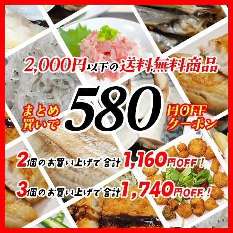 2,000円以下送料無料商品 どれでも2個以上購入で1個につき580円OFFクーポン