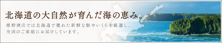 北海道の大自然が育んだ海の恵み
