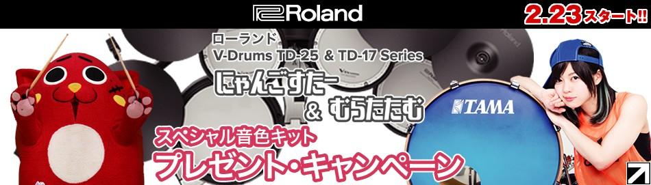 V-Drumsキャンペーン