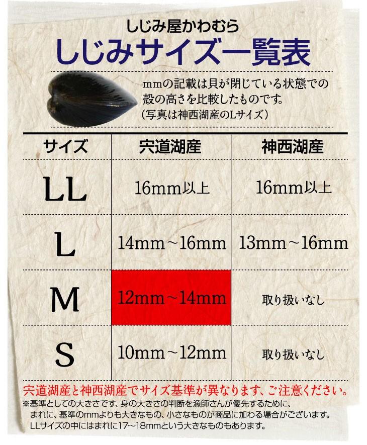 しじみのサイズ一覧表、宍道湖産しじみMサイズ、12ミリ〜14ミリ