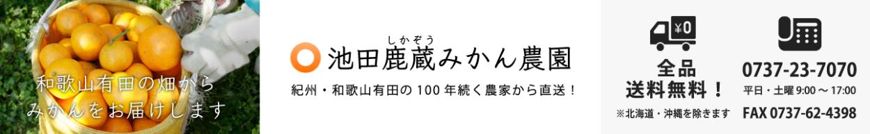 池田鹿蔵みかん農園 紀州・和歌山県 有田で100年続く農家から産地直送