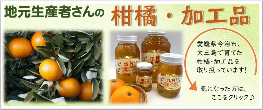 柑橘単品セット
