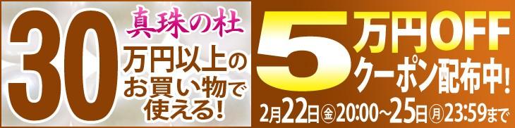 お買い物合計金額30万円以上で使える5万円OFFスペシャルクーポン