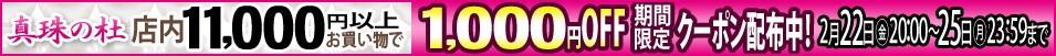 お買い物合計金額11,000円以上で使える1,000円OFF クーポン