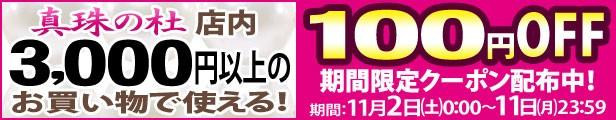合計金額3,000円以上のお買い物で使える100円OFFクーポン