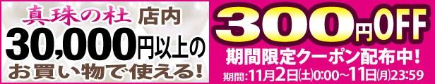 合計金額30,000円以上のお買い物で使える300円OFFクーポン