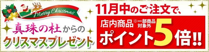 真珠の杜からクリスマスプレゼント 11月中のご注文で店内商品ポイント5倍