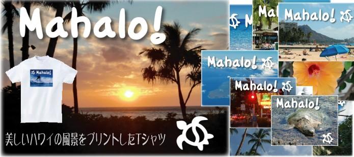 ハワイの風景シリーズ