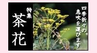 切り花向き(茶花・盆花)