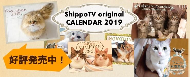 2019カレンダー予約