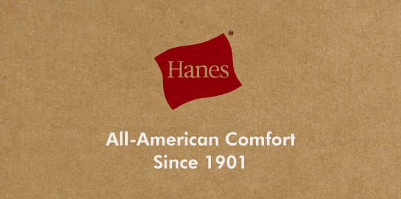 (ヘインズ)Hanes Global Line ボクサーブリーフ 2枚パック 3L 4L