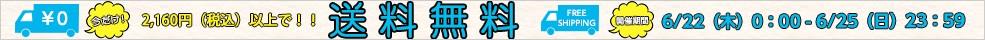 \2160円以上送料無料 6/22-6/25