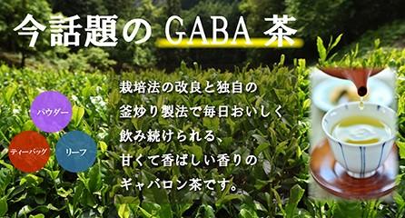 今話題のGABA