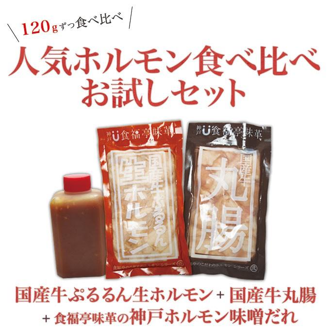 食福亭味革の人気ホルモンお試しセット!送料無料