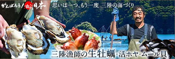 三陸宮城県産 雄勝湾 かき 生牡蠣
