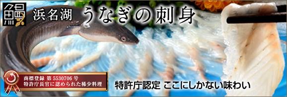 静岡浜松産 特許取得 鰻の刺身 ウナギ