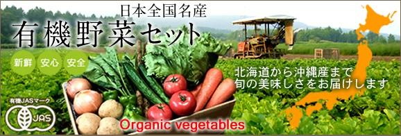 有機JAS認定 新鮮野菜 有機野菜 産地直送
