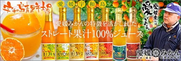 愛媛県宇和島市 愛媛みかん ミカンジュース オレンジジュース 100%果汁