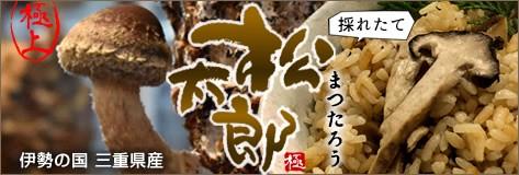 松太郎 三重県産 採れたて芳醇きのこ