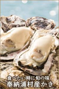 三重県伊勢志摩産 伊勢神宮奉納 かき 生牡蠣 べっぴん牡蠣 牡蛎