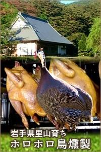 石黒農場 ほろほろ鳥 パンタード 食鳥の女王 フランス料理 国産ホロホロ鳥