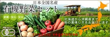 有機野菜 セット スムージー