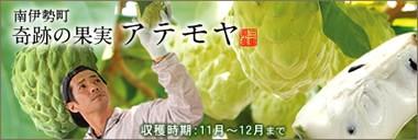 アテモヤ 世界フルーツ 奇跡 三重県