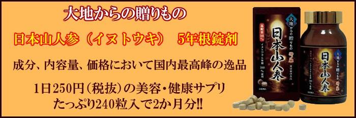 日本山人参(イヌトウキ) 5年根錠剤 240粒