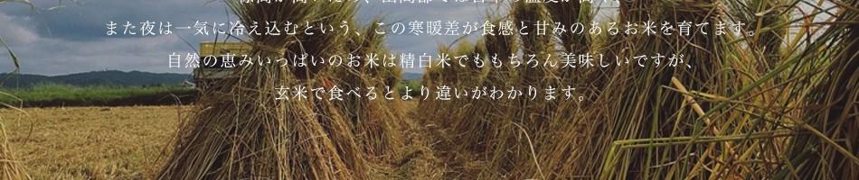 標高が高いため、山間部では日中の温度が高く、また夜は一気に冷え込むという、この寒暖差が食感と甘みのあるお米を育てます。