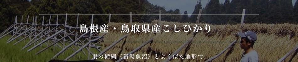 島根産・鳥取県産こしひかり