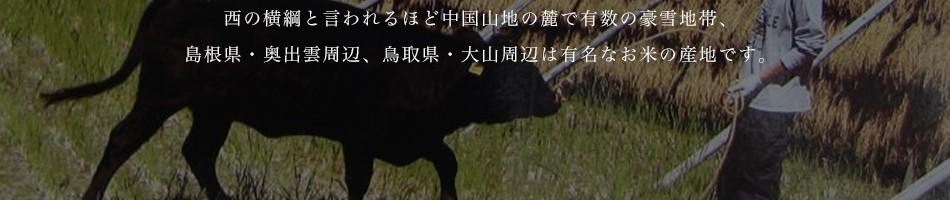 東の横綱(新潟魚沼)とよく似た地形で、西の横綱と言われるほど中国山地の麓で有数の豪雪地帯、島根県・奥出雲周辺、鳥取県・大山周辺は有名なお米の産地です。