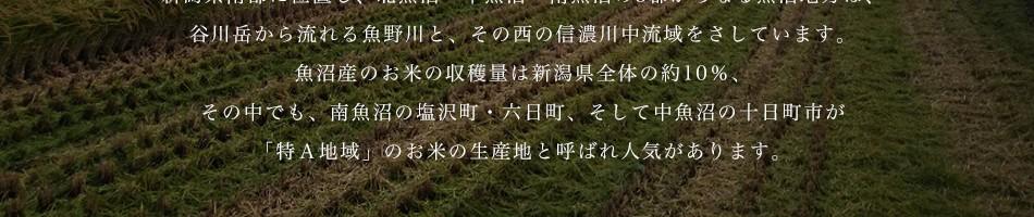 新潟県南部に位置し、北魚沼・中魚沼・南魚沼の3郡からなる魚沼地方は、谷川岳から流れる魚野川と、その西の信濃川中流域をさしています。