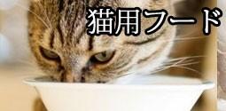 猫用フード