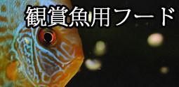 観賞魚用フード