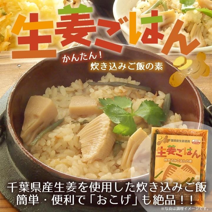 生姜ごはん かんたん炊き込みご飯の素 簡単・便利で「おこげ」も絶品!!