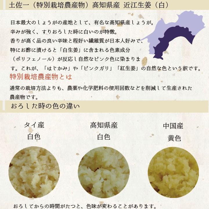高知県産説明