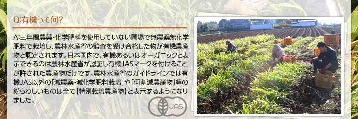 有機とは?A:三年間農薬・化学肥料を使用していない圃場で無農薬無化学肥料で栽培し、農林水産省の監査を受け合格した物が有機農産物と認定されます。日本国内で、有機あるいはオーガニックと表示できるのは農林水産省が認証し有機JASマークを付けることが許された農産物だけです。農林水産省のガイドラインでは有機JAS以外の「減農薬・減化学肥料栽培」や「何割減農産物」等の紛らわしいものは全て【特別栽培農産物】と表示するようになりました。