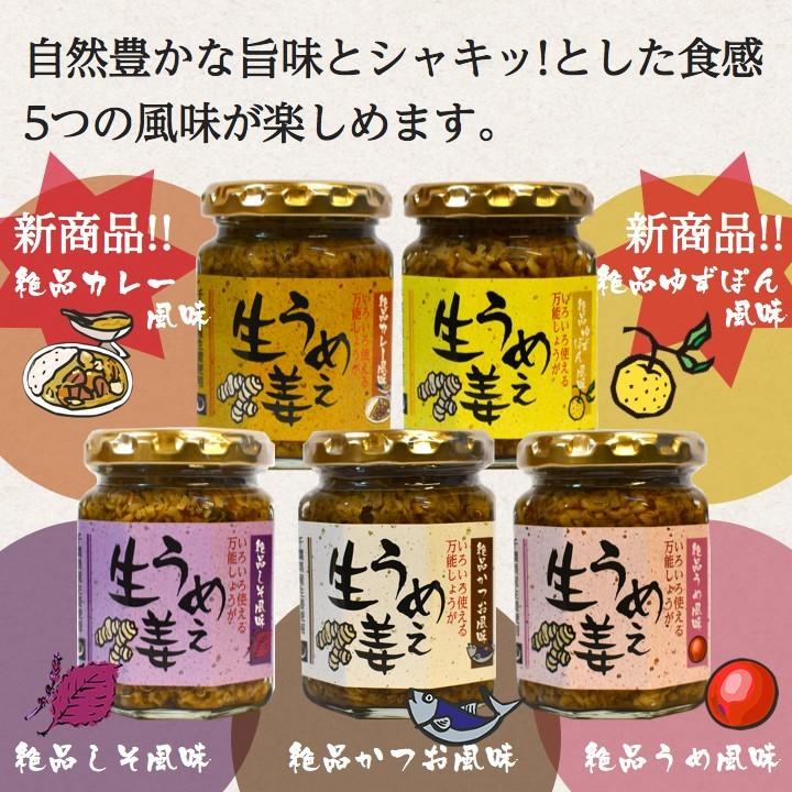 千葉県産生姜を使用、3つの風味かつお。うめ。しそ。