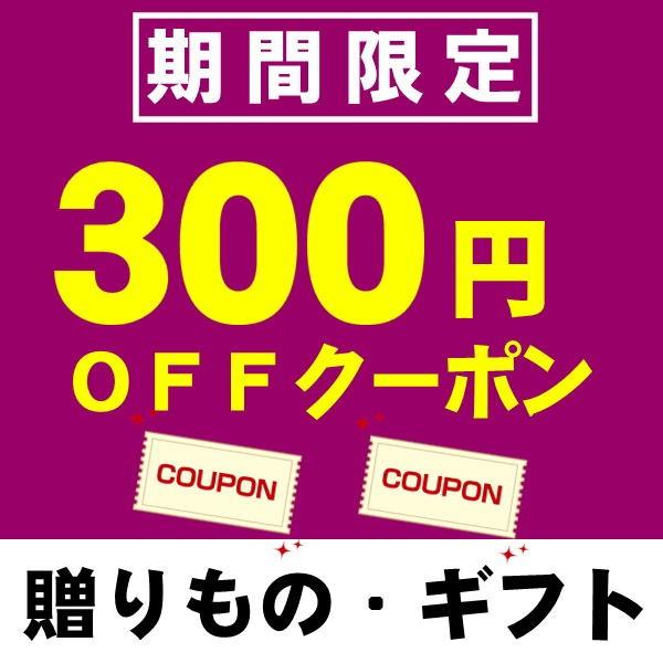 お中元・夏ギフト・お取り寄せグルメ 8,500円(税込み)以上お買い物で300円オフクーポン