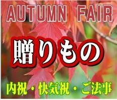 秋の贈りもの ギフト 内祝 快気祝 香典返し 2018