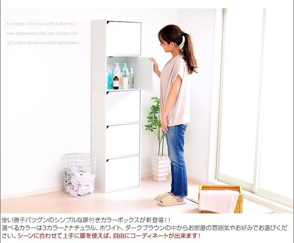 用途に合わせてマルチに使える 5枚扉付き 収納ボックス