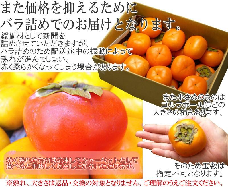 ワケ待ち モーニングバード わけ待ち 送料無料 柿 通販 庄内柿 たねなし柿