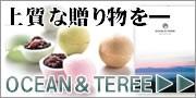 OCEAN&TERREシリーズ