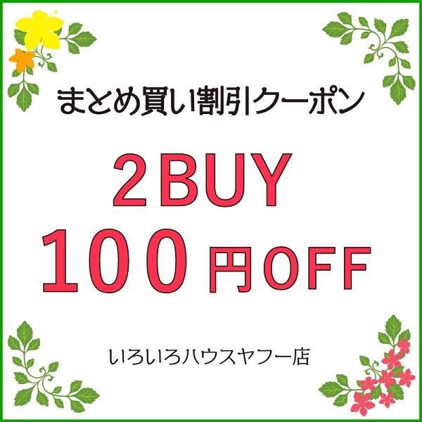 【2BUY 100円OFFクーポン♪】